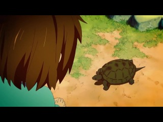 Yui and turtle