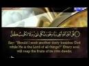 احمد العجمى الجزء الثامن من القرآن الكري