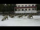 22 Push-Up Challenge Генерал-майор Микац. 169 учебный центр