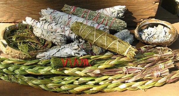 Как с помощью трав улучшить собственную жизнь