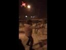 Драка пьяных полицейских попала на видео