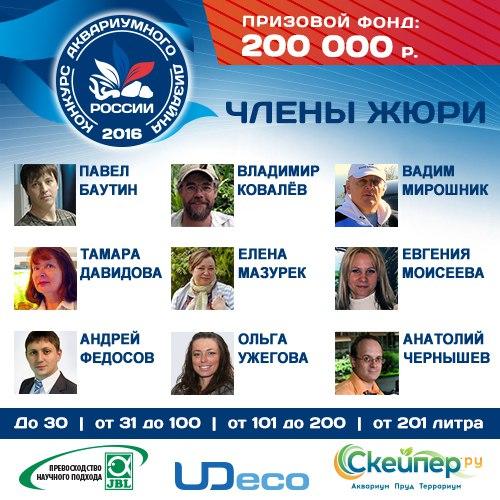 Конкурс аквариумного дизайна России 2016 4yCt1yz-g0k