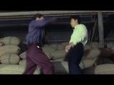 Donnie Yen vs John Salvitti CRYSTAL HUNT HD