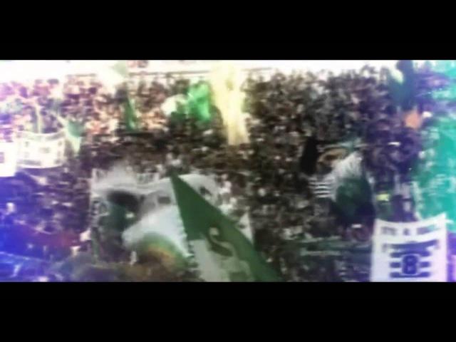 Sporting Clube de Portugal   SPORTING SEMPRE
