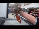 The rescue of a grocery store Lobster ( Lobby Joe)