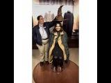 Instagram video by Vanessa Hudgens Snapchats  Jan 21, 2017 at 1126pm UTC