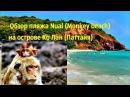Остров Ко Лан («Коралловый остров») Дикий  пляж обезьян красивые место