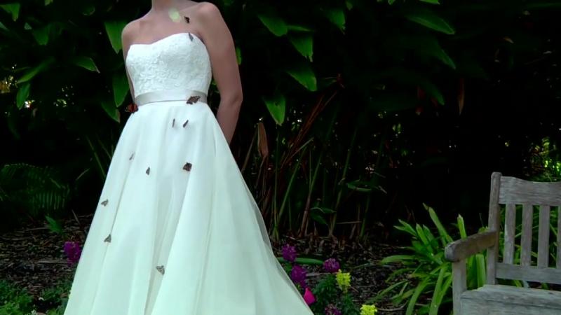 Живые Бабочки на свадьбу!