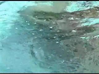 mermaids in peril pool fight drown