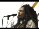 02. Bob Marley The Wailers - Rasta Man Vibration [Live at Harvard Stadium⁄Amandla Festival]