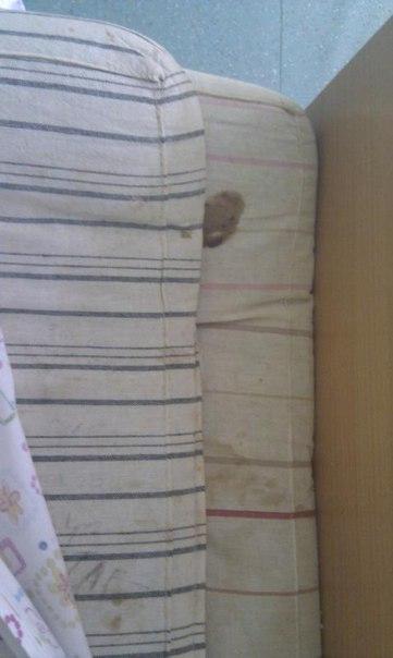 Жители Альметьевска пожаловались на плохие условия в детской больнице — «Народный контроль»