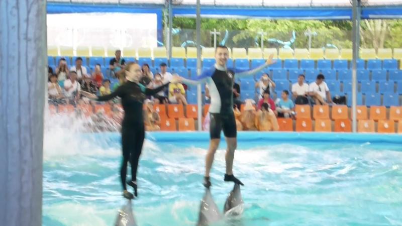 Фантастика! Дельфины и люди