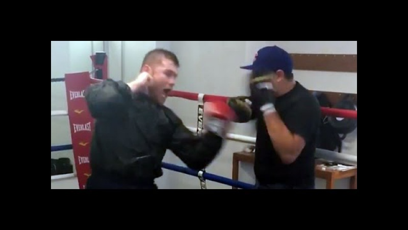 CANELO ALVAREZ SHOWS DEVASTATING POWER IN C CAN JULIO CESAR CHAVEZ JR. WITHSTAND THESE PUNCHES?