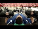 Как правильно подходить к тренировке груди? rfr ghfdbkmyj gjl[jlbnm r nhtybhjdrt uhelb?