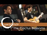The Cactus Blossoms -
