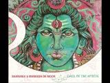 Bahramji &amp Maneesh de Moor - Call Of The Mystic (2004)