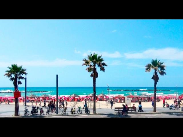 229 Набережная и пляжи Тель Авива