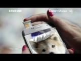 Реклама Samsung Galaxy S7 и S7 edge