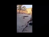Сирия: Работа снайперов САА
