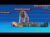 Когда она лежала на сцене с собакой, судьи не ожидали увидеть первоклассное шоу.