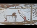 Дикие дети ломают сетку. гор.Нефтекамск