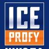 Хоккейная школа ICE-Profy