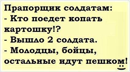 Полина Царицына |