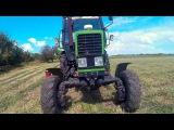 МТЗ 82.1 , покос ярового ячменя на сено / MTZ 82.1 mowing of a spring barley on a hay