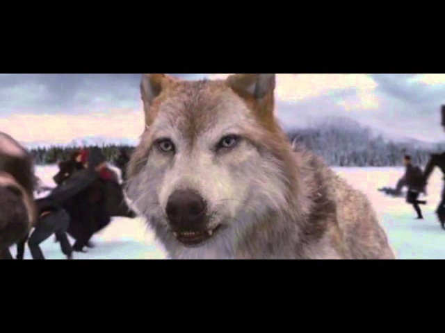 СУМЕРКИ - ФИНАЛЬНАЯ БИТВА.Twilight - Final fight .Музыка Kara Kul - Mark Petrie) (DevisProd)