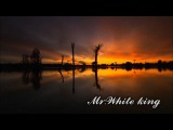 mr.White king x  MARKO DRAGAN ZECEVIC Featuring Red OFFICIAL MUSIC VIDEO