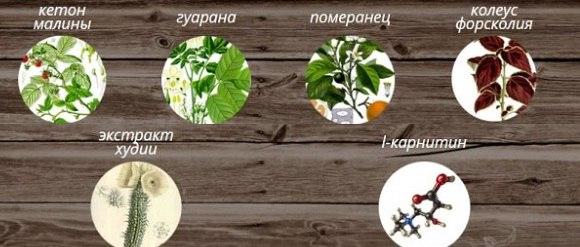 Состав Эко Пиллс
