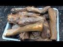 Как коптить сало, мясо горячего копчения в домашних условиях