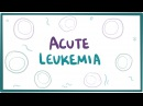 Acute myeloid lymphoblastic leukemia - causes, symptoms pathology