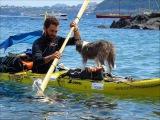 По Средиземному морю: на каяке мужчина уволился с работы и отправился в плавание вместе с собакой