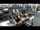 Kali Muscle & Flex Wheeler Train Legs