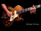 Epiphone Limited Edition ES-295 Premium Guitar Demo