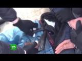Задержание организатора теракта в питерском метро сняли на видео