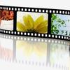 Видеостудия СВЕТЛАНА | видеосъемка