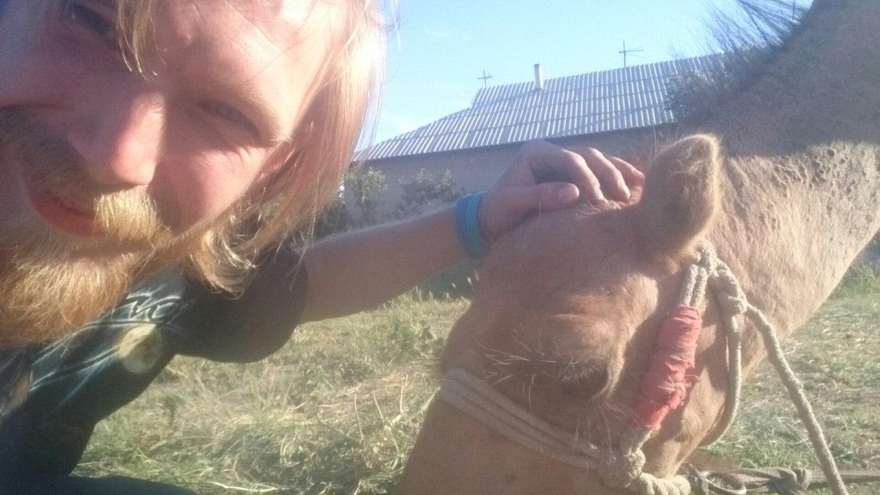 Тупое, но классное животное)))