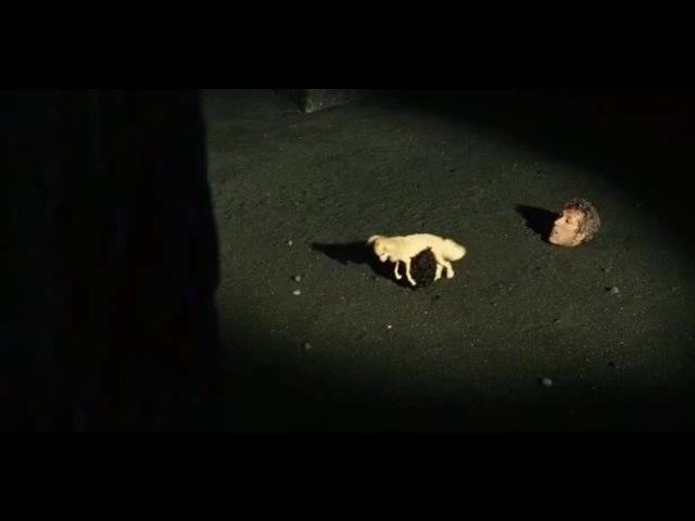 Sur la piste du Marsupilami (2012) - Who let the dogs out