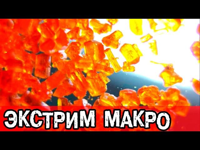 КАК Я СНИМАЮ ВЛОГ. ЭКСТРЕМАЛЬНОЕ МАКРО НА GOPRO с объективом PIXAERO 3,77mm manual для GoPro