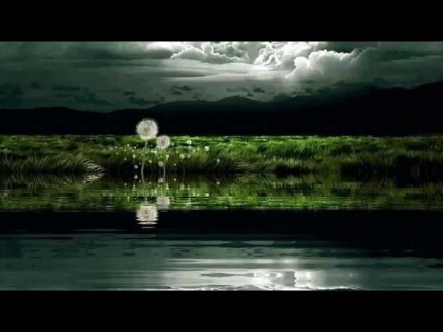Одиночество. (из кф Черный ворон. исп Полина Бахаревская )