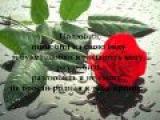 Эльдар Далгатов - Полюбил Eldar Dalgatov - Polubil and Lyrics