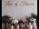 Бадьорий ранок 15 05 2017 Line of flowers