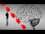 10 идей как за 15 минут заставить мозг работать и думать–Как быстро повысить рабо ...
