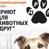 """Приют-реабилитационный центр для животных""""Друг"""""""