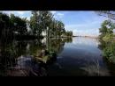 Stive Morgan - Bindweed Above The Water Вьюн над водой