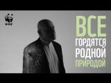 Владимир Познер в проекте WWF России «Гордиться — не значит помогать».
