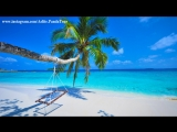 #SinodA Ex Machina #INDIA #ТУРЫ в #ГОА #beach #resort the high 3 #FOLLOWME #indian songs #IndiaTour