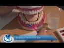 Как научить ребенка правильно чистить зубы؟